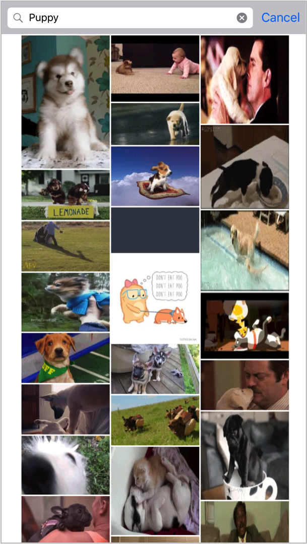 gif-search.png